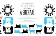 SeekSherpa Gets Entry into Google for Entrepreneurs Exchange