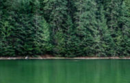 HPE Introduces GreenLake Hybrid Cloud